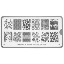 ProNails Stamping Plate Rising Sun Collection + Scraper